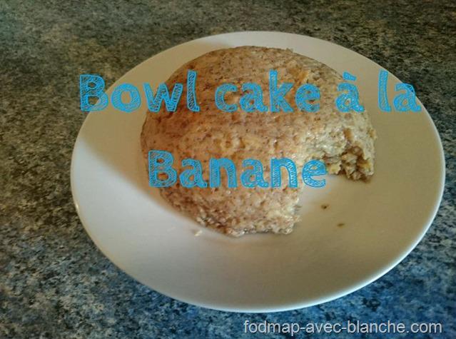Bowl Cake Recette Sans Banane